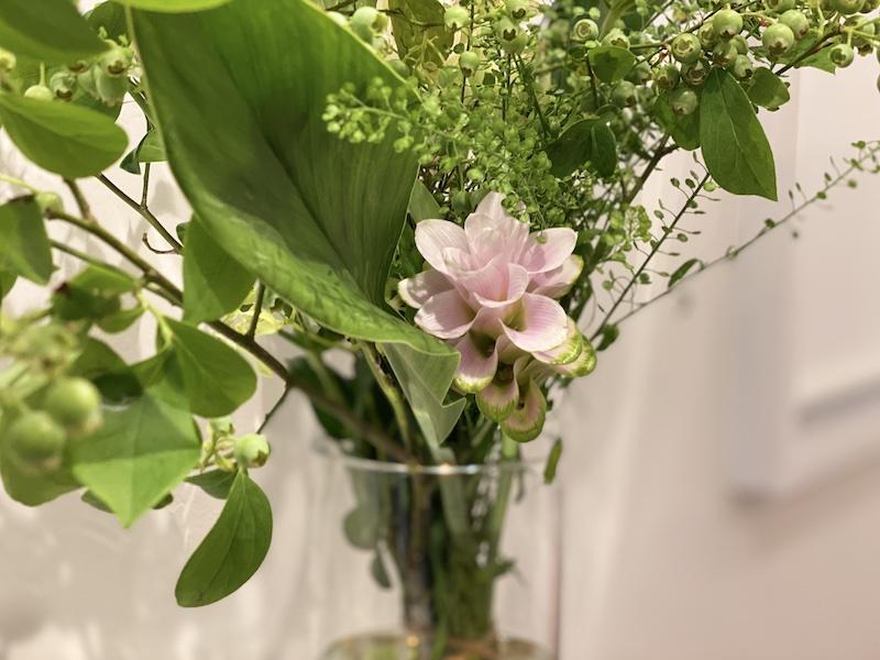 flowers #013